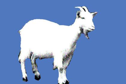 Geit is totemdier van de 39ste Gene Key