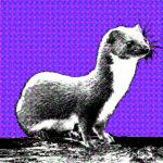 Wezel, totemdier van de 51ste Gene Key